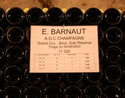 Barnaut07