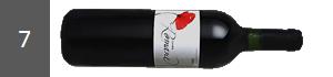 COFFRET DECOUVERTE - MARS 2016 - 07 - Bordeaux Moulin de Peyronin Romane 2009