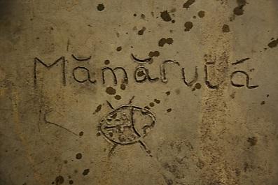 Mamaruta - 01