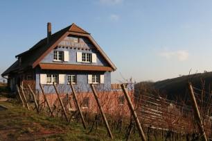 Alsace Bohn 13