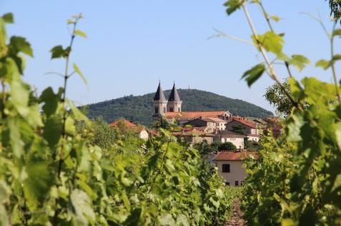 Régnié Les Forchets Behind The Winery