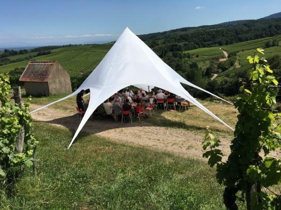 Alsace Bohn 28