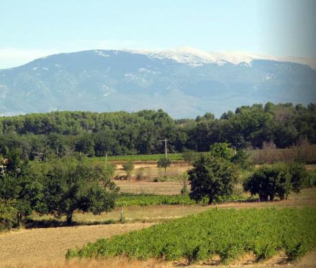 Chateau Landra Ventoux - 04