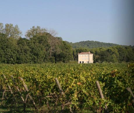 Chateau Landra Ventoux - 05