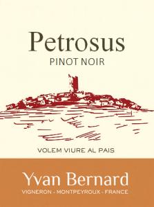 Yvan Bernard Petrosus