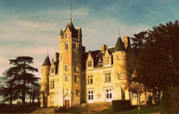 Château de Coulaine Chinon - 11
