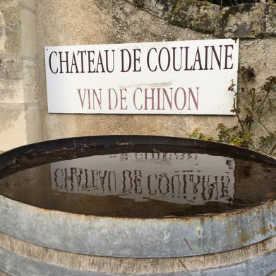 Château de Coulaine Chinon - 31